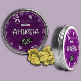 Fleur de CBD Amnesia