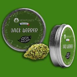 Jack Herrer 9% CBD