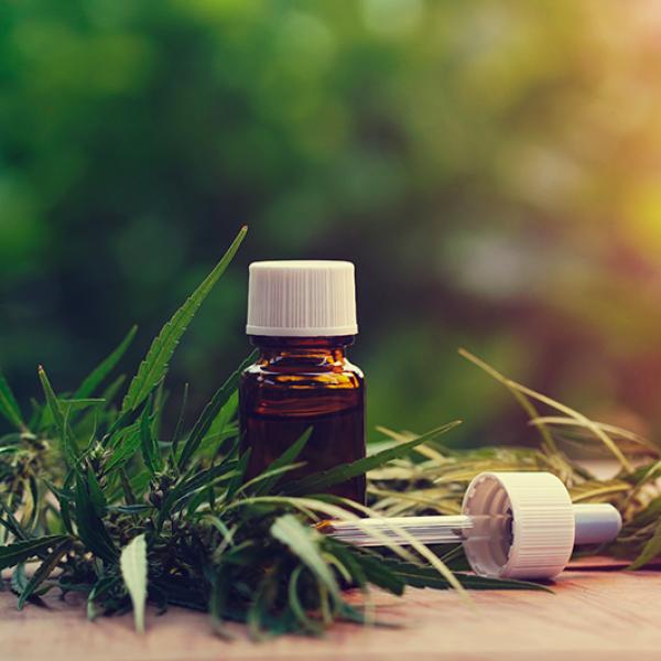 Les huiles essentielles de chanvre